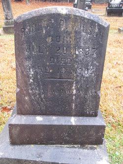 Robert D Wilson
