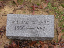 William W Byrd