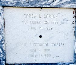 Carey L Carter