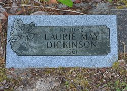 Laurie May Dickinson
