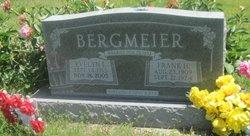 Frank H Bergmeier