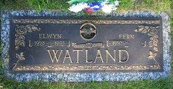 Elwyn Watland