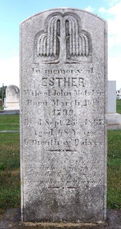 """Esther Buckwalter """"Hettie"""" <I>Herr</I> Metzler"""