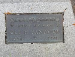 Ole H. Sandvick