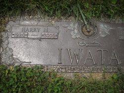 Harry M Iwata