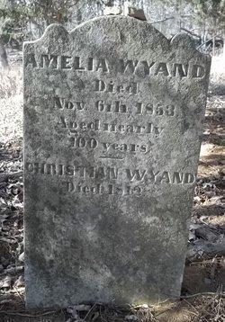 Amelia <I>Putman</I> Wyandt