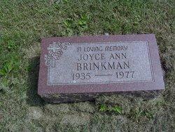 Joyce Ann Brinkman