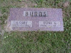 Olive Gertrude <I>McGuire</I> Burns