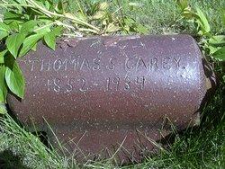 Thomas S Carey