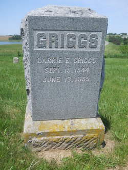 Carrie E Griggs