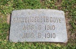 Sarah Elisabeth Goyen