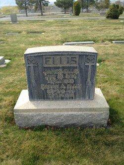 Sarah Ann <I>Giles</I> Ellis