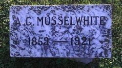 Alexander G Musselwhite