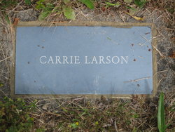Carrie <I>Wold</I> Larson