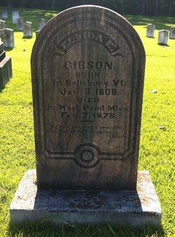 Elvira Elizabeth Gibson
