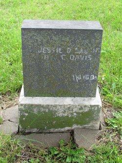 Jessie D Davis