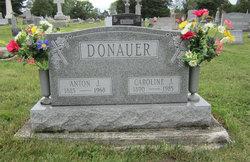 """Caroline J """"Carrie"""" <I>Sommer</I> Donauer"""
