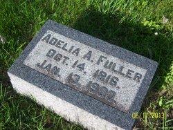 Adelia Abigail <I>Rhodes</I> Fuller