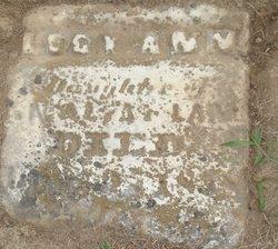 Lucy Ann Lane