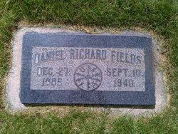 Dr Daniel Richard Fields