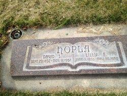 David A Hopla
