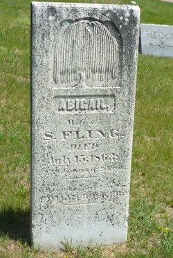"Abigail ""Abbie"" <I>McFadden</I> Fling"