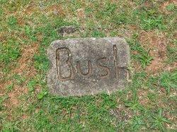 Carlton Bush