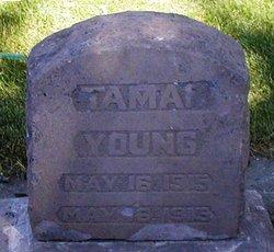Tamar Young