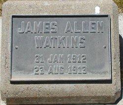 James Allen Watkins