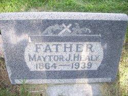 Maytor James Healy