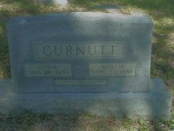 Leona <I>Young</I> Curnutt