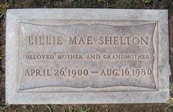 Lillie Mae <I>Skelton</I> Shelton