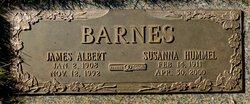 Susanna <I>Hummel</I> Barnes