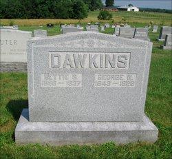 George Washington Dawkins