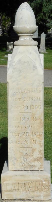 Eliza Catherine <I>Taylor</I> Larkins