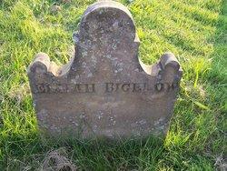 Elijah Bigelow