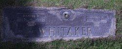 Daniel P Whitaker