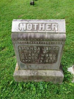 Amanda <I>Jones</I> Wood