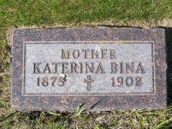 Katherine <I>Kalas</I> Bina