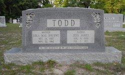 Lola Mae <I>Bowen</I> Todd