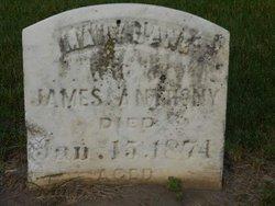 Mary Jane <I>Pierce</I> Anthony