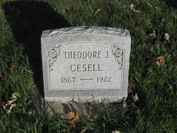 Theodore J Gesell