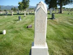 Alvin James Olsen