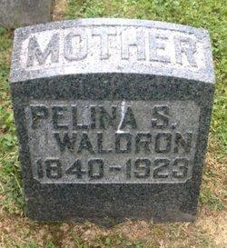 Pelina <I>Shira</I> Waldron