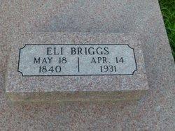 Eli Briggs
