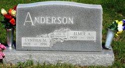 Cynthia M Anderson