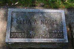Cecelia Agnes <I>Johnson</I> Nohel