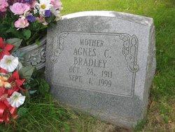 Agnes Clara <I>Anklam</I> Bradley