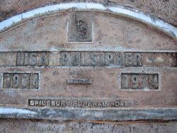 Lisa Pulsipher