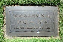 Miguel A Pinon